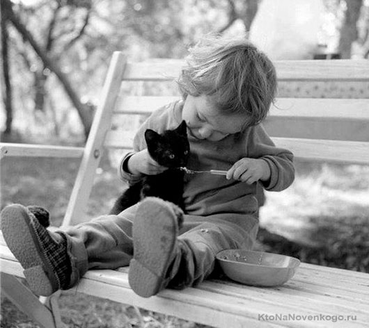 Дитина з кошеням