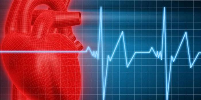 Малюнок серця і серцевого ритму